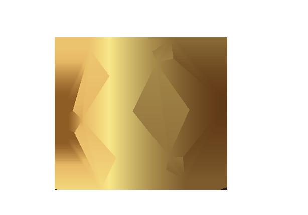 logo-polygone-conseil